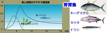 青背魚JPEG18K.jpg