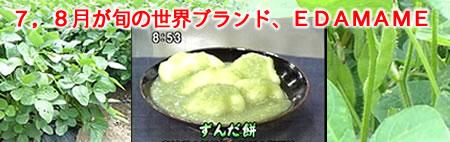 枝豆とEDAMAME