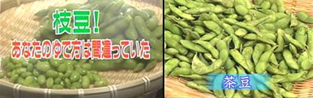 枝豆の茹で方と茶豆