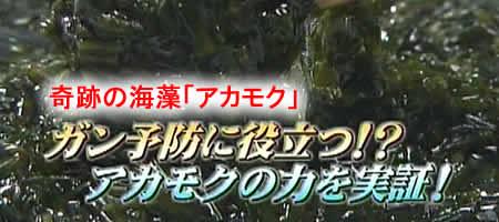 2-26akamokuJPEG18K