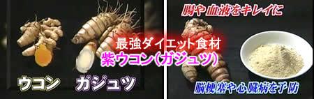 ガジュツ(紫ウコン)