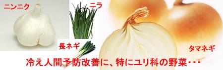 冷え性改善ユリ科野菜