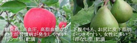 リンゴ型・洋なし型肥満