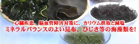 k-kaisouruiJPEG18K