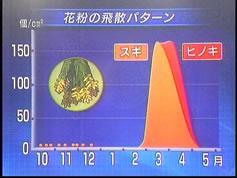05年花粉飛散パターン