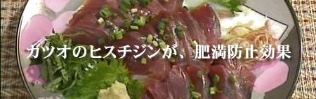 katuo-hisJPEG18K