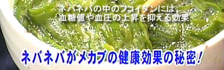 めかぶ(メカブ)