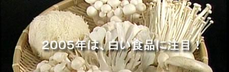 白い食品・キノコ