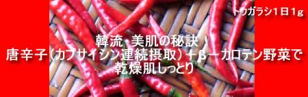 唐辛子(トウガラシ)