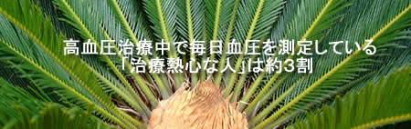 ketuatusokuteiJPEG18K.jpg