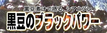 kuromame-blackpowerJPEG24K.jpg