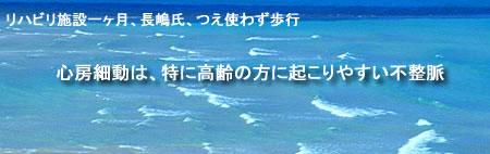 nagasima-waveJPEG19K.jpg