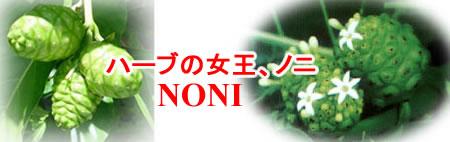 ハーブの女王ノニ(NONI)