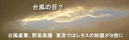 taifu-yasaiJPEG13K.jpg