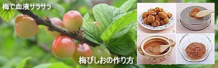 梅びしおの作り方