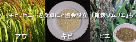 zakkokukyokaiJPEG25K.jpg