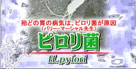 128pylorijpeg21k
