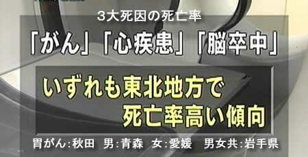 200847seikatushukanjpeg19k_2