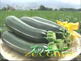 200882zucchini2jpeg9k