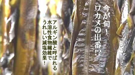 201032wakamejpeg19k