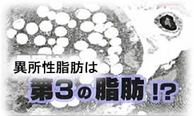 201036himan2jpeg9k
