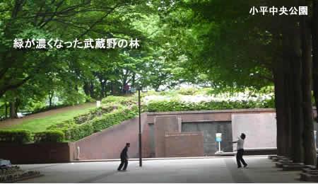 2010511greenjpeg20k