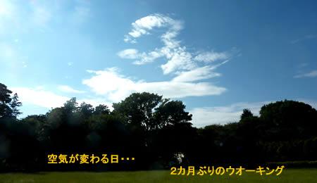 2010918waikingjpeg17k