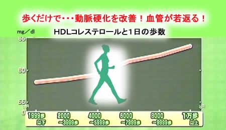 2011120koresutejpeg19k