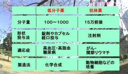 2011125koutaiyakujpeg24k