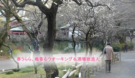 2011224sakabajpeg21k