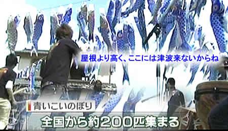 201155koinoborijpeg27k_2
