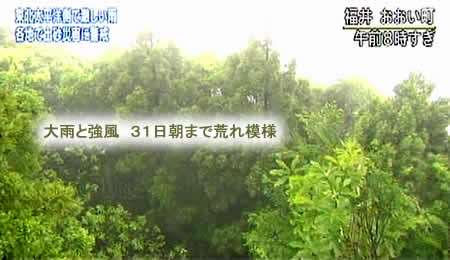 2011530fuanjpeg18k