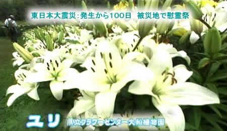 2011618yuri1jpeg20k_2