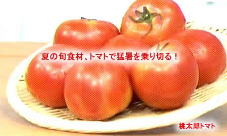 2011812tomato2jpeg17k
