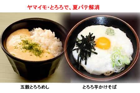 2011819yamaimo1jpeg19k