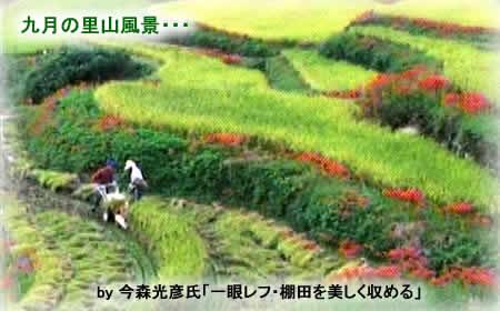 201191satoyamajpeg20k