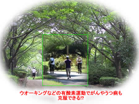 20121210yusansoundojpeg29k