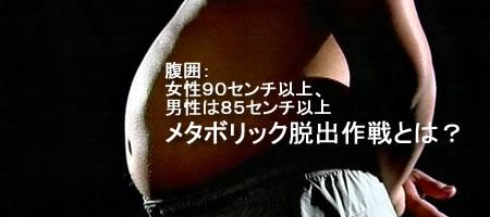 31metabojpeg18k